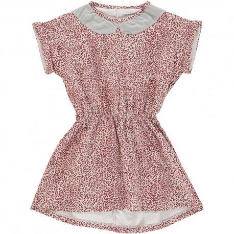 Pippa Dress - Allover Print